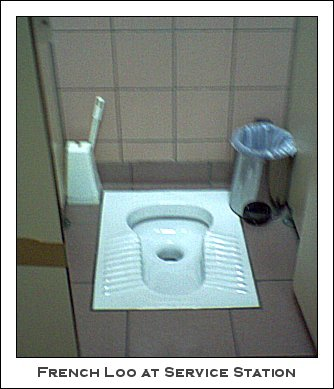 newer buildings public toilets consist porcelain bowl built floor seat